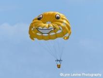 Flying Fun